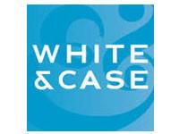 white&case.jpg
