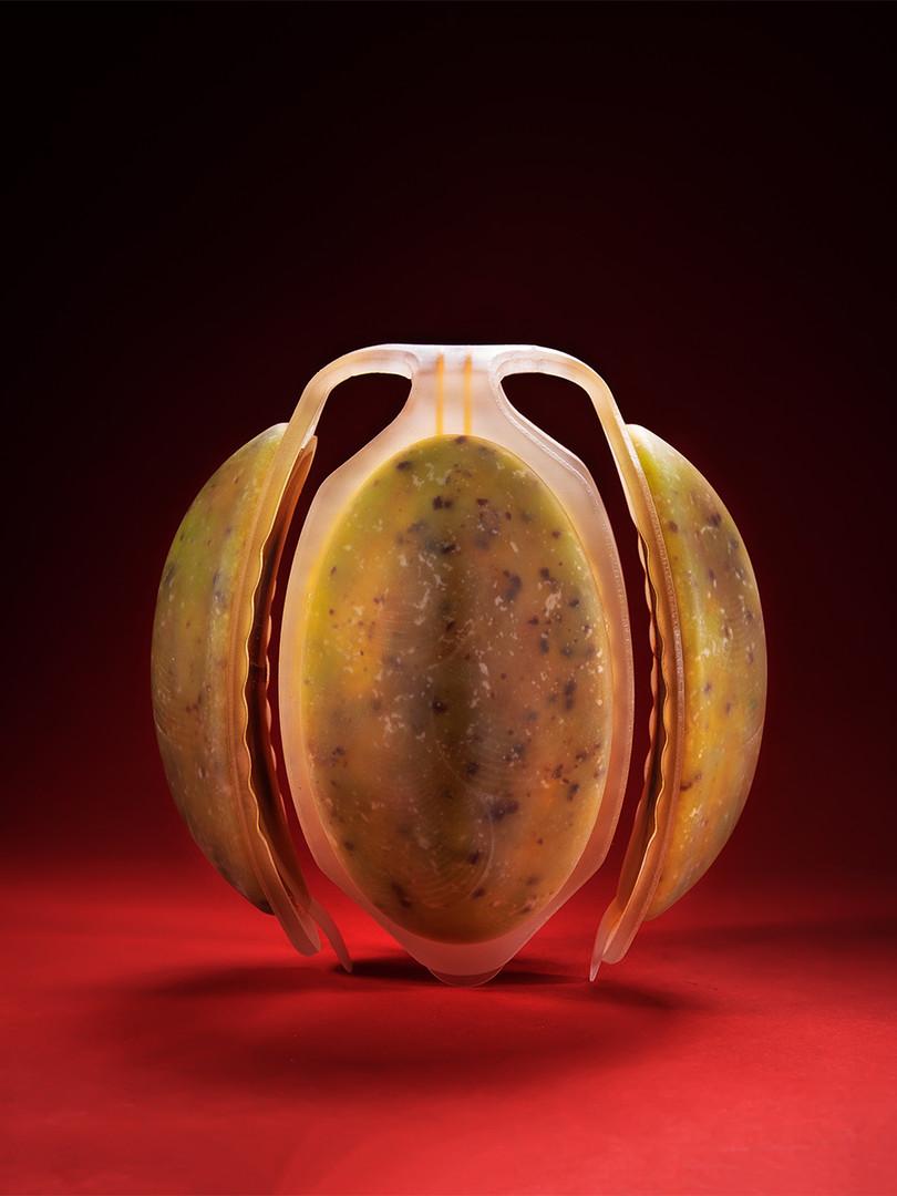 Neo Fruit | Meydan Levy