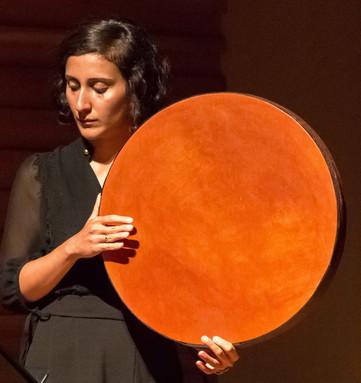 Eleven Reflections - Aida Shahghasemi