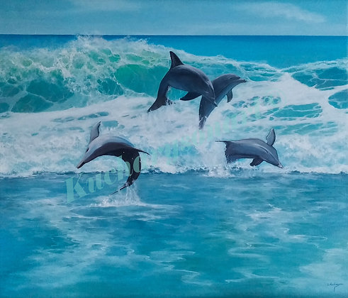 Dolphin Playtime