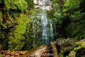 Dover_Adamson Falls_058.jpg