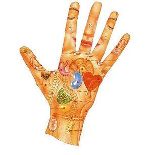 la main.jpg