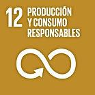 S_SDG_Icons-01-12.jpg