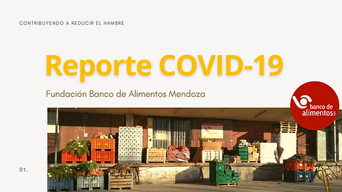_Reporte COVID-19 6 MESES.png