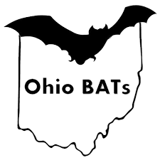 I've been Endorsed by Ohio Bad Ass Teachers BATs!