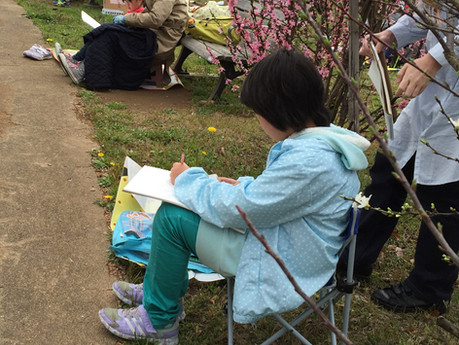 くりくり写生会2016 4/3(日)リフレッシュプラザ柏公園 桜満開!