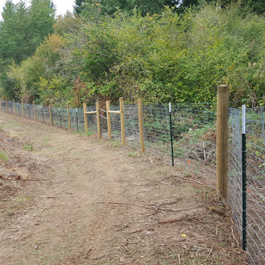 field fence for goats or horses