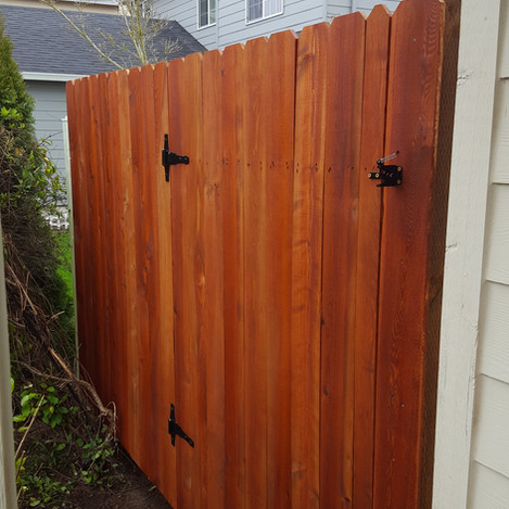 New cedar gate, stained