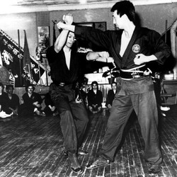 Fu Jow Pai Promotion1973