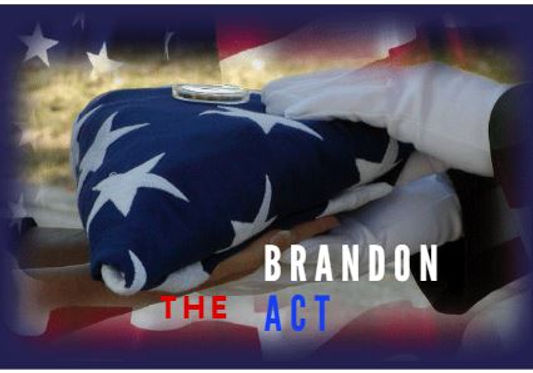 The Brandon Act.jpg
