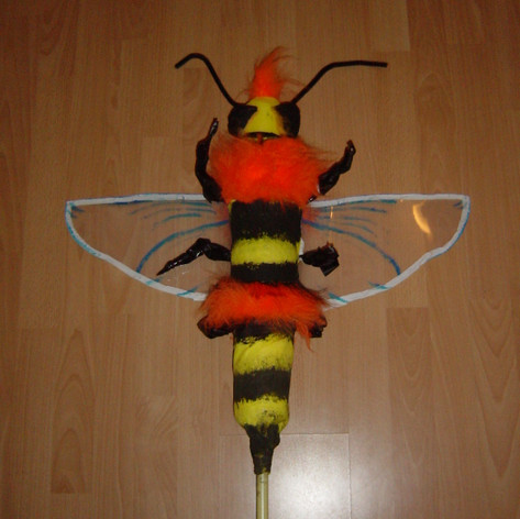 Insect onder de loep (2).jpg