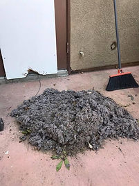 huge pile of lint from clogged dryer vent