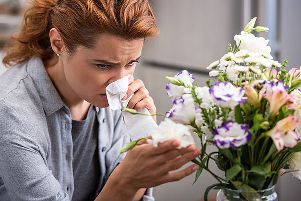 allergens in your home, common household allergens, reduce home allergens, what causes indoor allergies