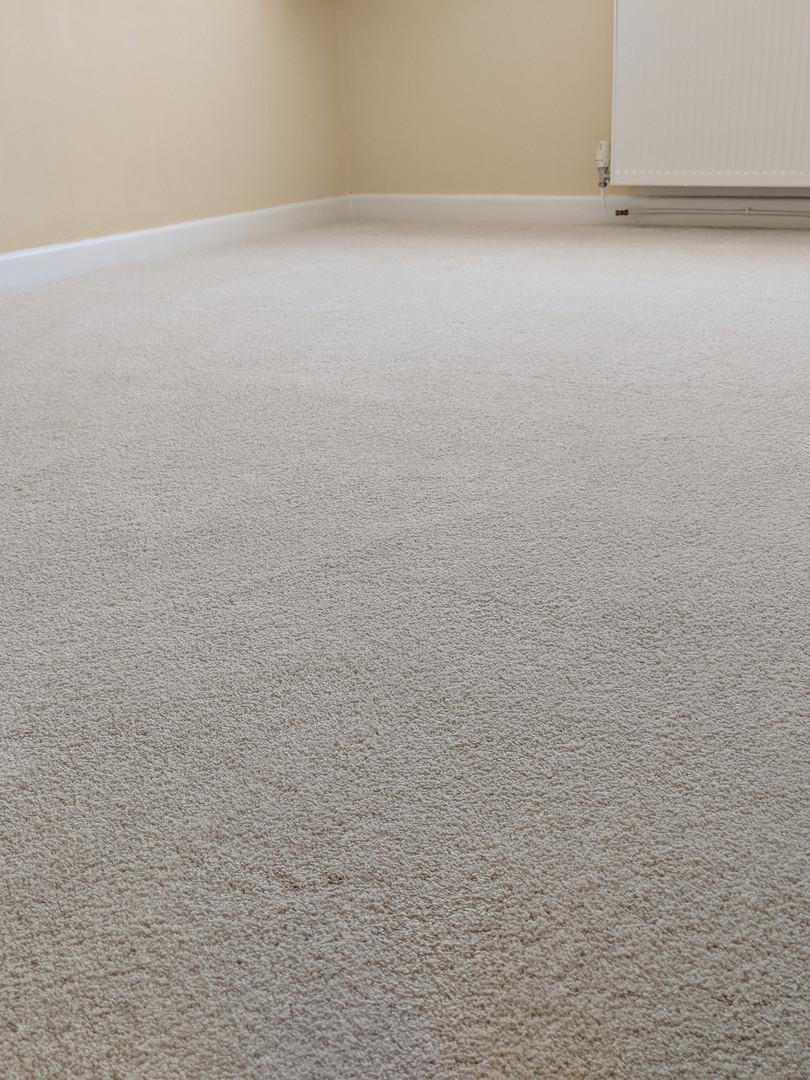 carpet in bedroom bisque