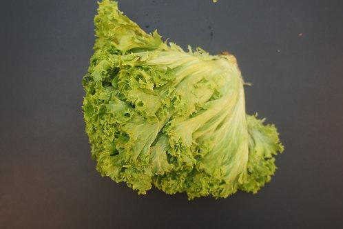 Green / Red Oak Leaf Lettuce
