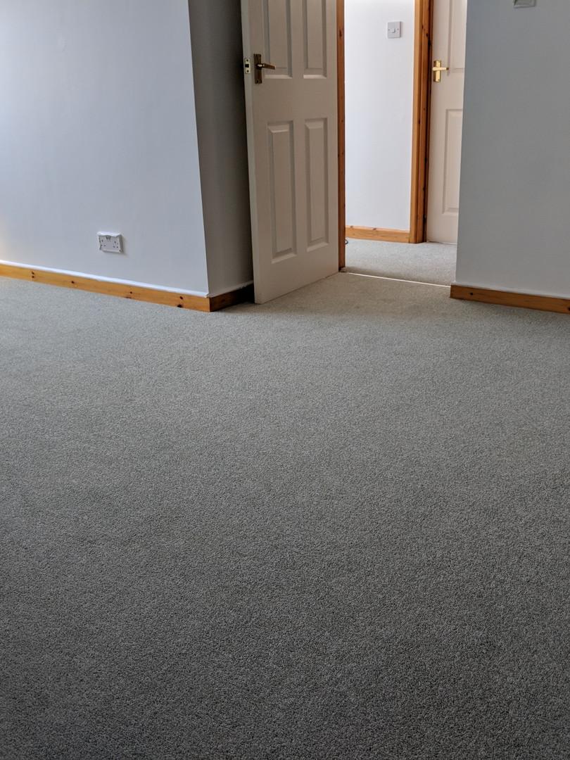 carpet in lounge light grey
