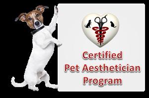 esthetician certification