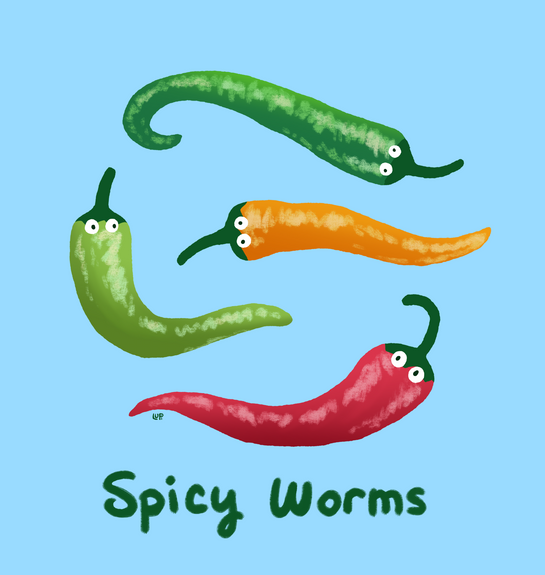 Spice worms