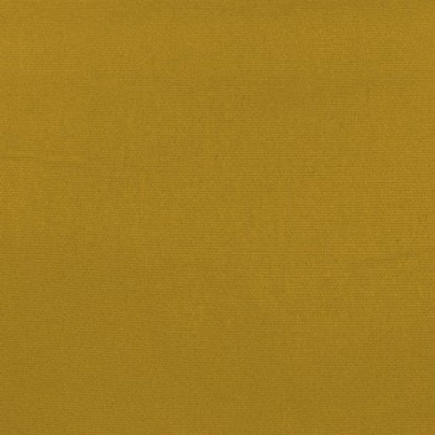 Amara   Mustard