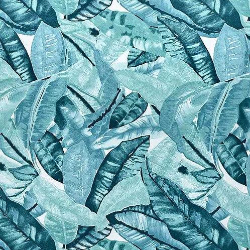 Jungle Outdoor | Cielo