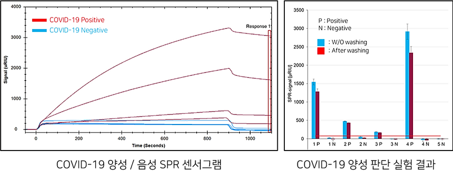 SPR sensor chip COVID-19 experiment