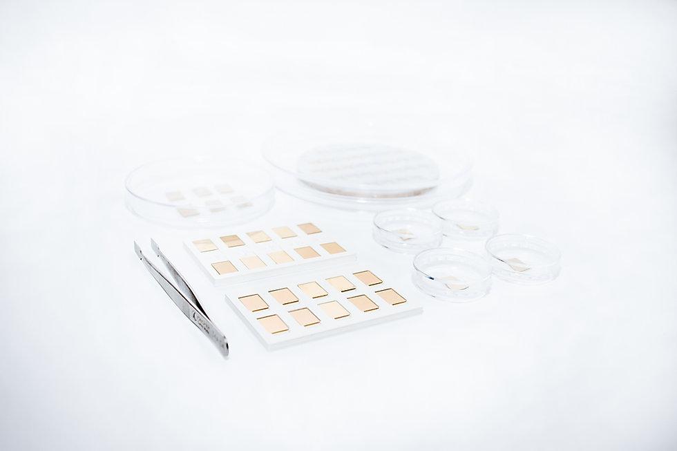 SPR sensor chip
