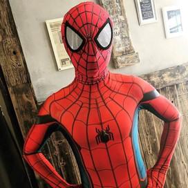 Spider Hero.jpg