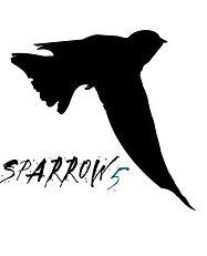Sparrow 5.jpg
