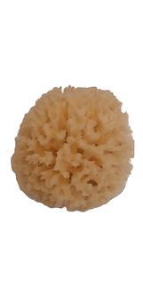 Eponge naturelle 9 cm