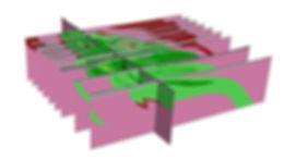 Perspective of vertical sections of a mafic-ultramafic body (in green).