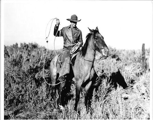 Robbins-Wild-Horse-e1476213827959.jpg