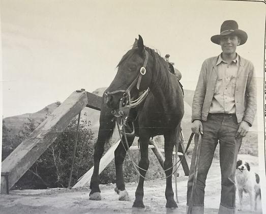 Harvey-Harold-with-horse-and-dog.jpg