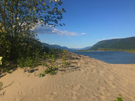 Columbia Gorge Island