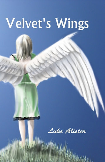 Velvet's Wings eBook