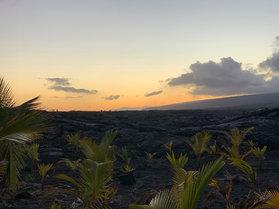 Kalapana Lava Fields 2.JPEG