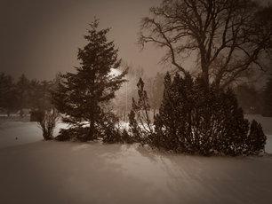 Snowy Night 1