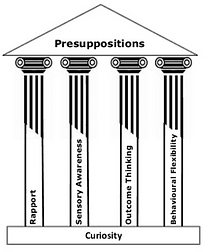 The Four Pillars of NLP.png