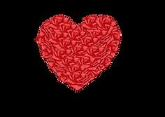 Rose Heart Downlaods