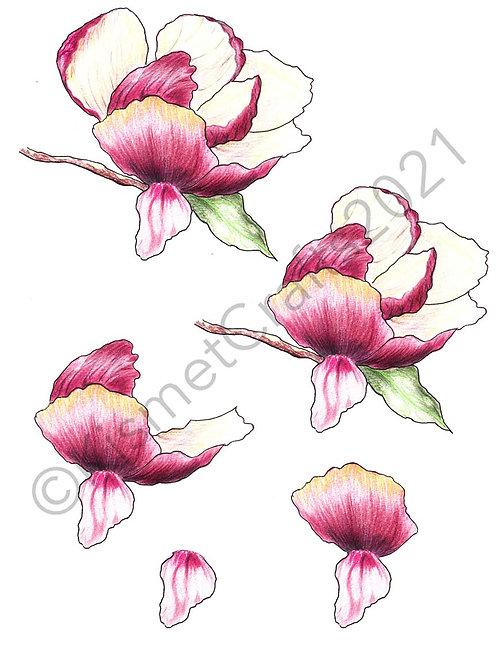 Magnolia 3D Decoupage