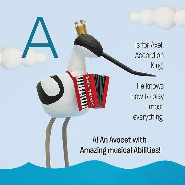 Alphabird_Avocet_72.jpg