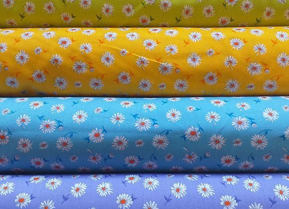 Danish Daisy - 4 colours