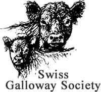 swiss galloway.jpg