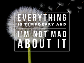Everything is Temporary And I'm Not Mad About It