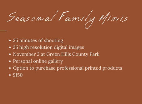 Seasonal Family Mini Sessions!