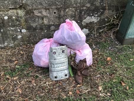 Litter Picking Pink Bags