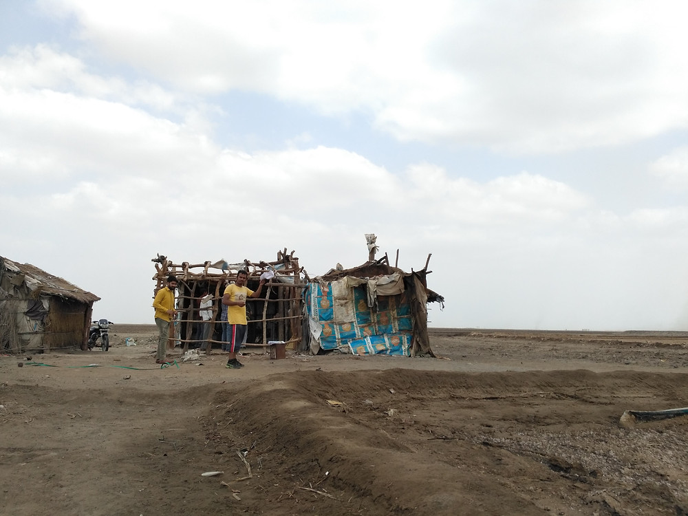 A typical shelter in Little Rann