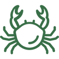 icon-crab.png