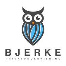 Bjerke-Privatundervisning-Logo-A.png