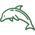 icon-dolphin.png