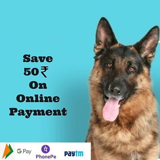 50rs off for online payment